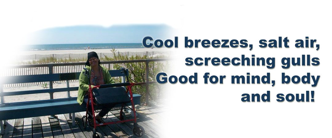 4-cool-breeze1